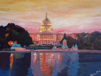 Washington Capitol1 by M Bleichner