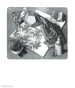 Reptiles by M. C. Escher