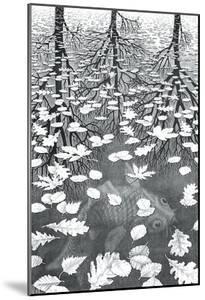 Three Worlds by M^ C^ Escher