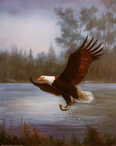 Eagle Fishing by M^ Caroselli