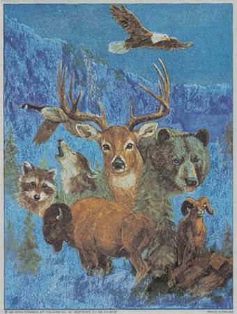 Wild Life Montage