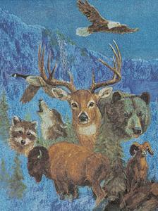 Wild Life Montage by M^ Caroselli