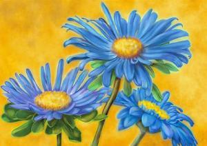 Blue Asters by M. De Flaviis
