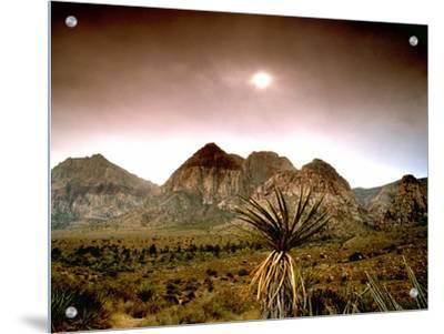 Mojave Desert, Las Vegas, Nevada