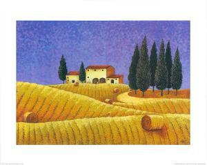 The Colours of Provence II by M^ Picard