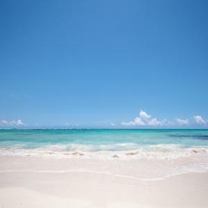 Beach Backgroud by M Swiet Productions