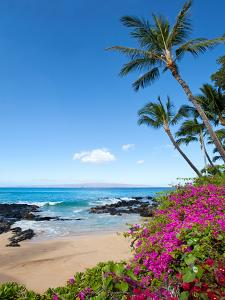 Makena Cove by M Swiet Productions