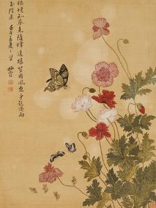 Corn Poppy and Butterflies, 1702 by Ma Yuanyu