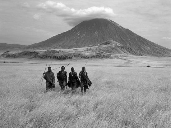 Maasai Warriors Stride across Golden Grass Plains at Foot of Ol Doinyo Lengai, 'Mountain of God'-Nigel Pavitt-Premium Photographic Print