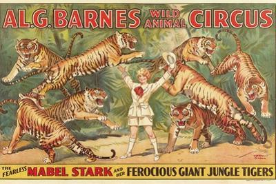 Mabel Stark, Tiger Trainer