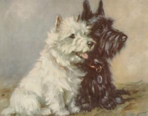 Scotch Terriers by Mac