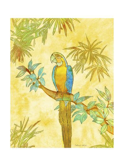 Macaw on Branch I-Catherine Kohnke-Art Print