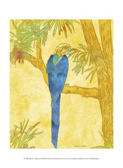 Macaw on Branch II-Catherine Kohnke-Art Print