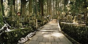 A Path Through Cedar Trees and Grave Markers at Okunoin Cemetery in Winter by Macduff Everton