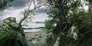 A View of the Coast Through an Overgrown Cut in the Rocks by Macduff Everton