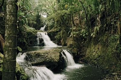 Onomea Falls in the Hawaii Tropical Botanical Gardens on the Hamakua Coast