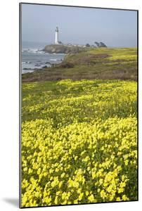 Pigeon Point Lighthouse and Spring Wildflowers Along the Coastline by Macduff Everton