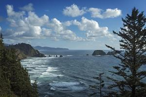 View of Pacific Ocean from Cape Meares State Park by Macduff Everton