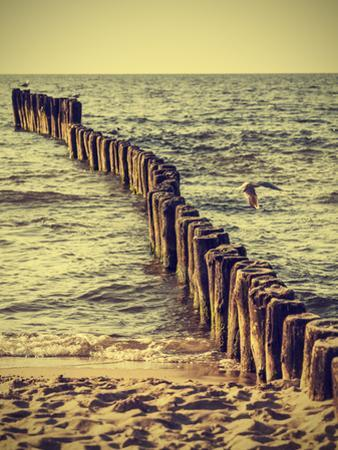 Wood Pilings on Beach, Vintage Retro Effect. by Maciej Bledowski