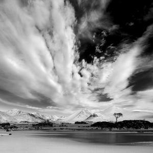 Scotland by Maciej Duczynski