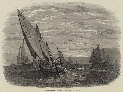 Mackerel Fishing, Brighton Boats--Giclee Print