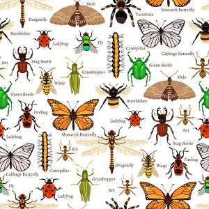 Flat Insects Seamless Pattern Vector Illustration by Macrovector