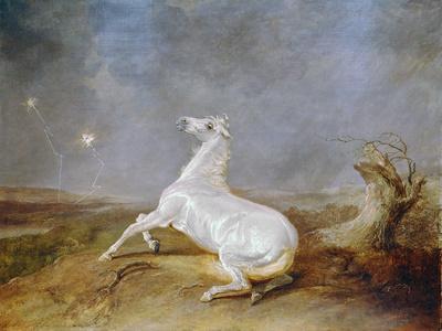 https://imgc.artprintimages.com/img/print/mad-horse_u-l-pusz2p0.jpg?p=0