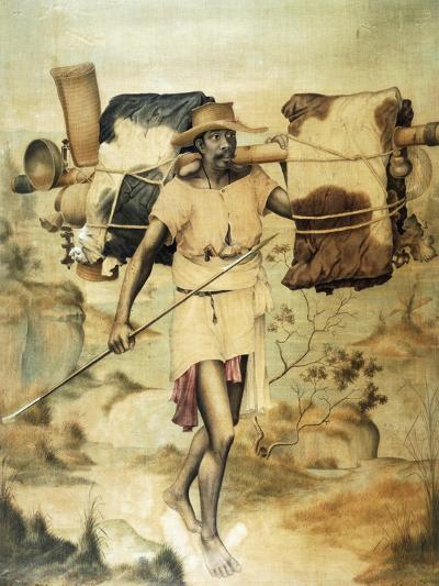 Madagascar Carrier--Giclee Print