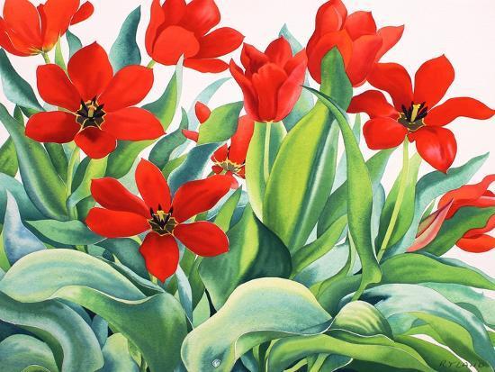 Madame Lefeber Tulips-Christopher Ryland-Giclee Print