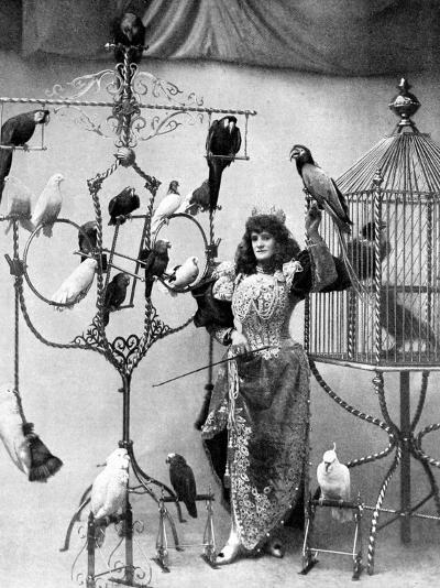 Madame Marzella with Her Pets, at the Tivoli, 1896--Photographic Print