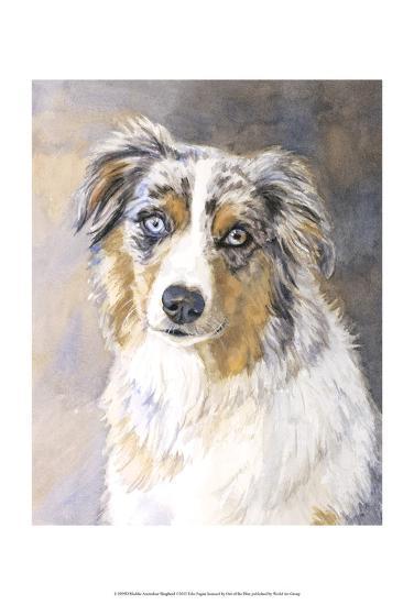 Maddie Australian Shepherd-Edie Fagan-Art Print