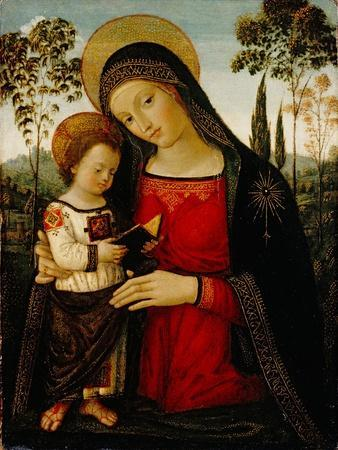 https://imgc.artprintimages.com/img/print/madonna-and-child-c-1490-1495_u-l-q1by8jw0.jpg?p=0