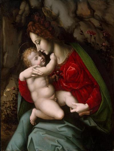 Madonna and Child, c.1520-Francesco Ubertini Verdi Bachiacca-Giclee Print