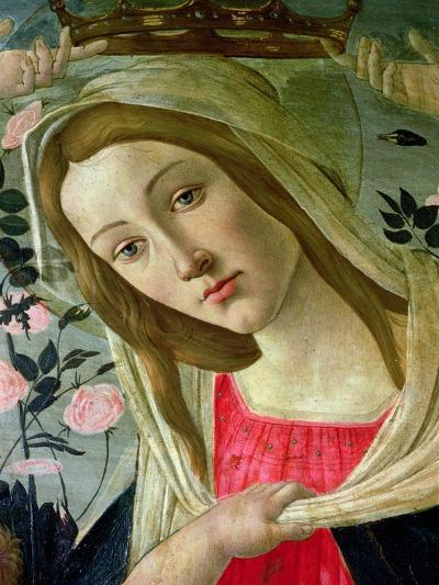 Madonna and Child Crowned by Angels, Detail of the Madonna-Sandro Botticelli-Giclee Print