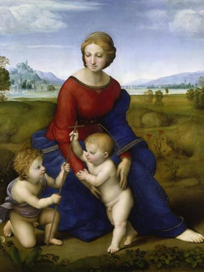 Madonna in the Meadow-Raphael-Giclee Print