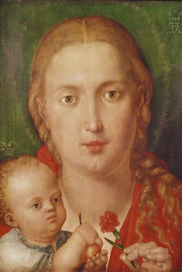 Madonna of the Carnation, 1516-Albrecht D?rer-Giclee Print