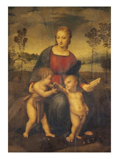 Madonna of the Goldfinch-Raphael-Giclee Print