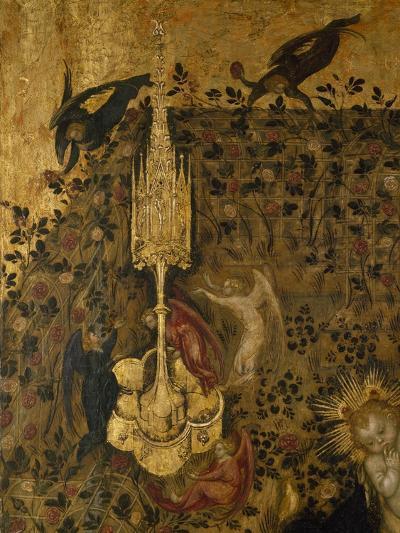 Madonna of the Rose Garden, 1420-1435-Stefano  da Verona-Giclee Print