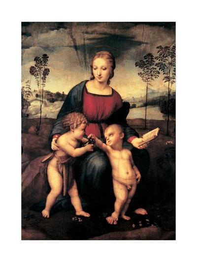 Madonna with Child and the Infant John the Baptist (Madonna of Goldfinch)-Sanzio Raffaello-Giclee Print