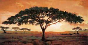 Memories of Masai Mara by Madou