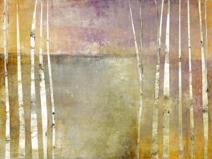 Birch 3 by Maeve Harris