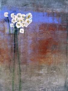 Marguerites 1 by Maeve Harris