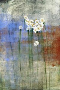 Marguerites 2 by Maeve Harris