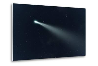 An Image of a Comet in the Deep Space