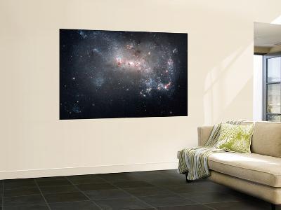 Magellanic Dwarf Irregular Galaxy NGC 4449 in the Constellation Canes Venatici--Giant Art Print