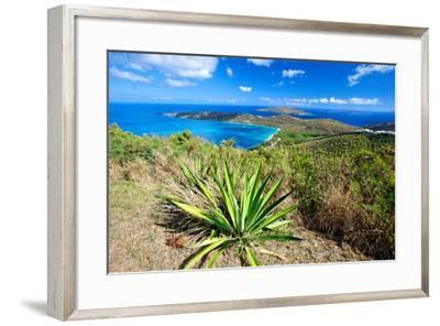 Magens Bay View, St Thomas, USVI-George Oze-Framed Photographic Print