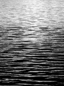 Ocean Current BW II by Maggie Olsen