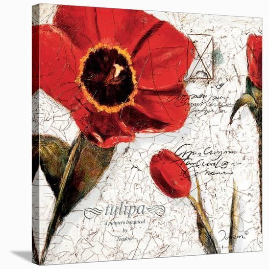 Magic of the Bloom-Joadoor-Stretched Canvas Print