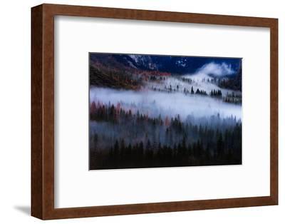 Magical Flow Mesmer Fog & Light Trees Sark Yosemite Winter Storm Valley-Vincent James-Framed Photographic Print