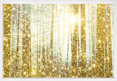 Magical Forest Framed Art